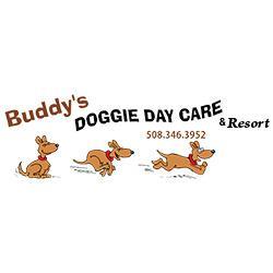 Buddy's Doggie Daycare, Grooming & Boarding