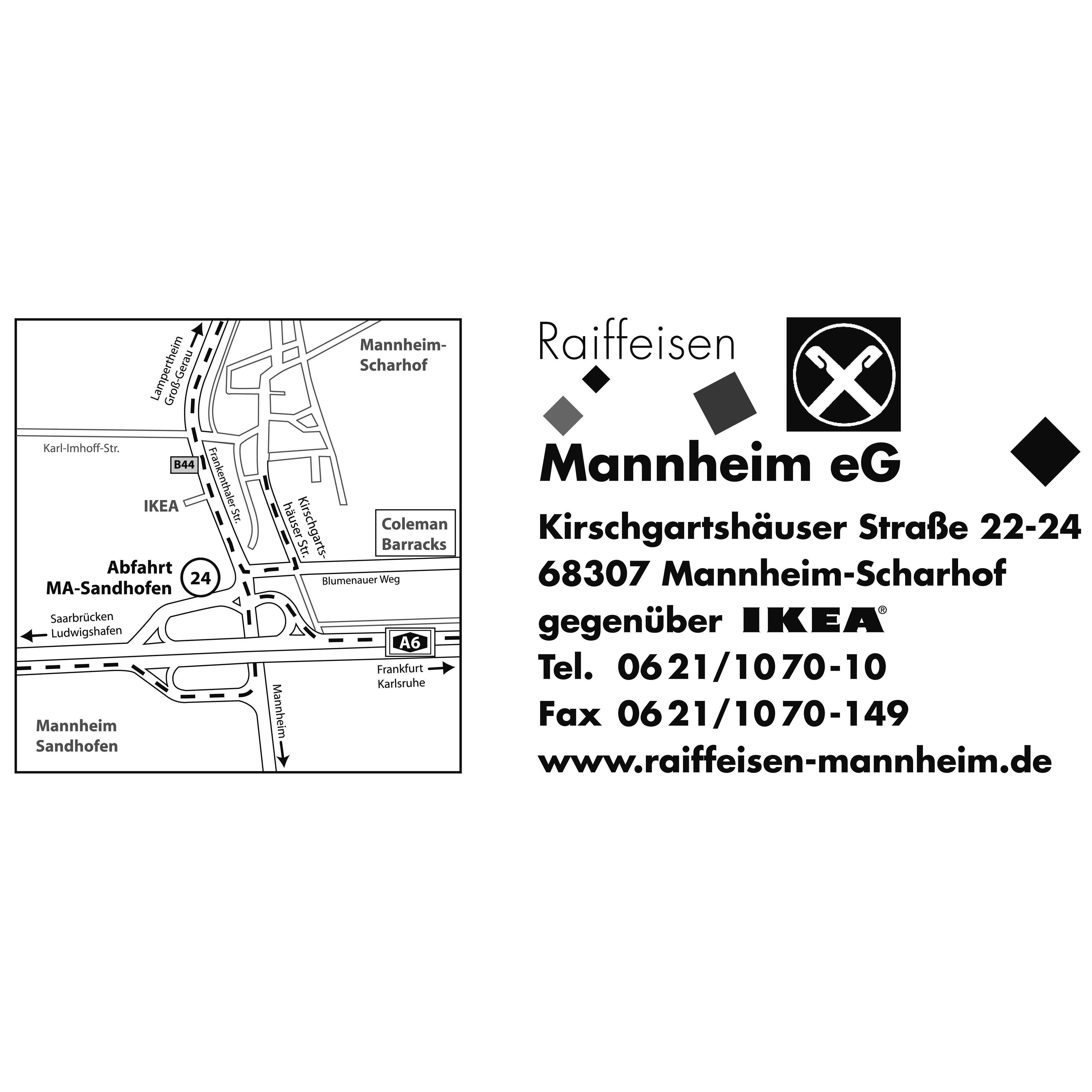 Bild zu Raiffeisen Mannheim eG in Mannheim