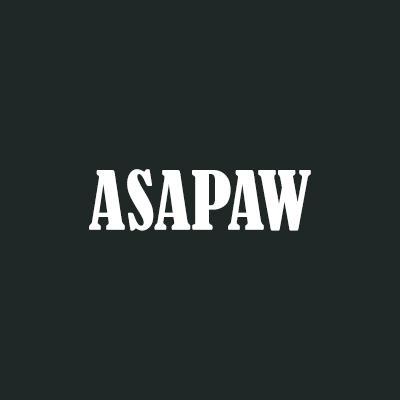 ASAP Auto Glass, LLC - Newton, KS - Auto Body Repair & Painting