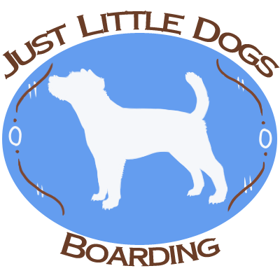 Pet Sitter in MN Watertown 55388 Just Little Dogs 10820 Swede Lake Rd.  (952)955-3990