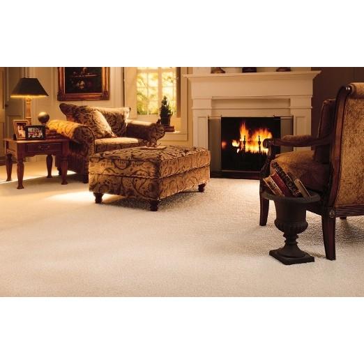 MEGA Carpet Cleaning