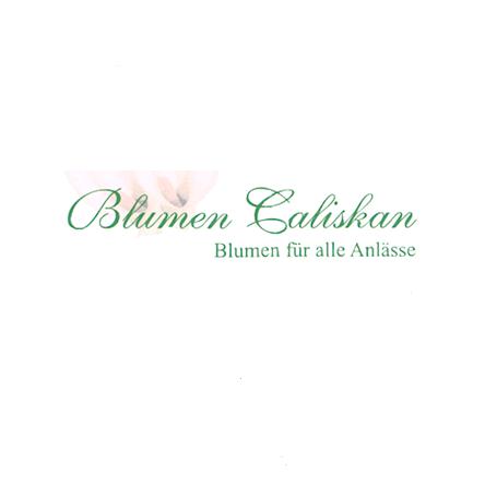 Bild zu Blumen Caliskan GbR in Frankfurt am Main