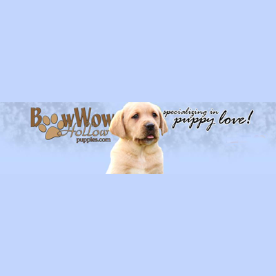 Bowwow Hollow Puppies