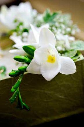 Kukkakauppa Vähärauman Kukka