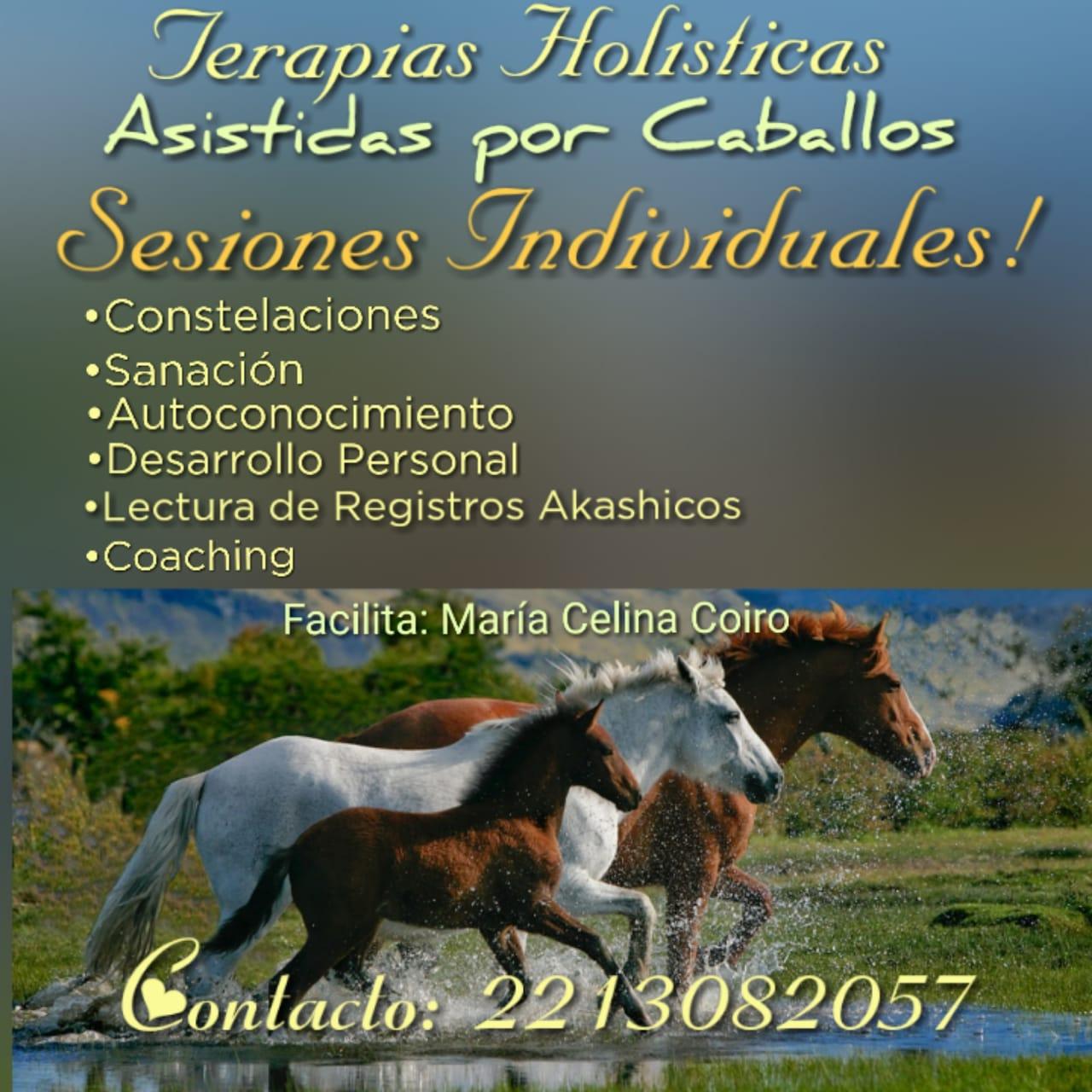 TERAPIAS HOLISTICAS Y ASISTENCIA EQUINA