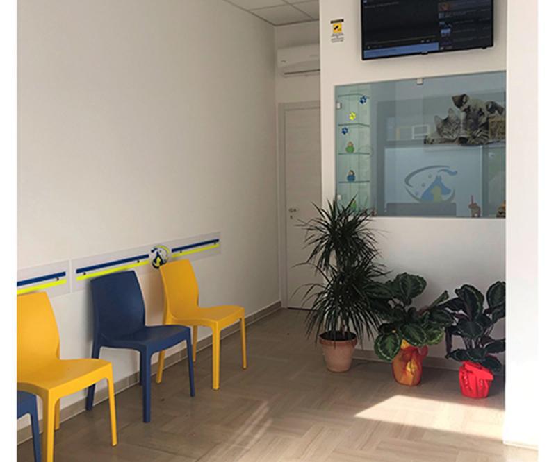 Ambulatorio Veterinario San Francesco