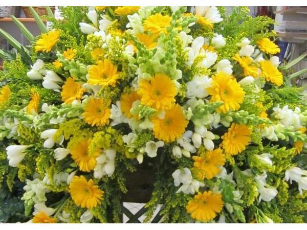 Blumen Christa Rubenzucker