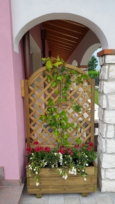 Garden Center Bernardi Sas