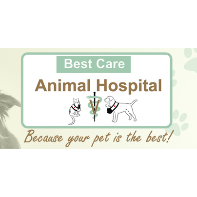 Best Care Animal Hospital