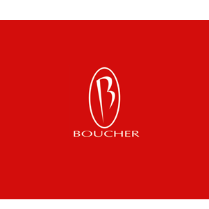 Boucher Auto Body Repair & Paint Center - Thiensville