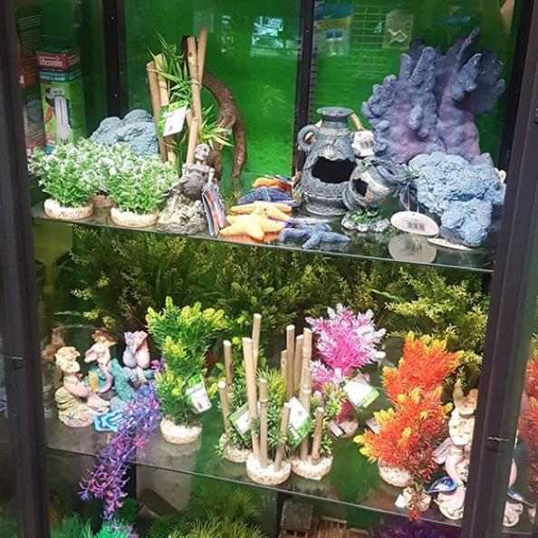 Shauna's Pet Shop