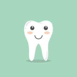 Dr. Ronald J. Gustafson, DDS - Slidell, LA - Dentists & Dental Services