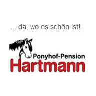Bild zu Ponyhof-Pension Hartmann in Bad Laer