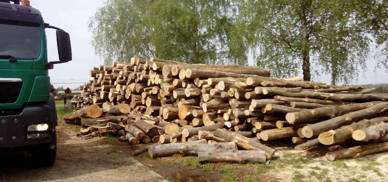 Prodej palivového dřeva – Jan Stuchlík Ing.