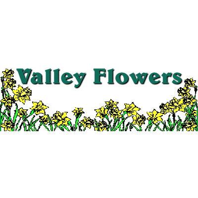 Valley Flowers And Gifts - Spring Valley, IL - Florists