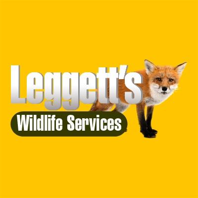 Leggett's Wildlife Services