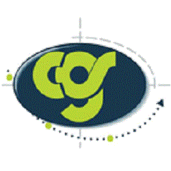 Cgs Information Technology