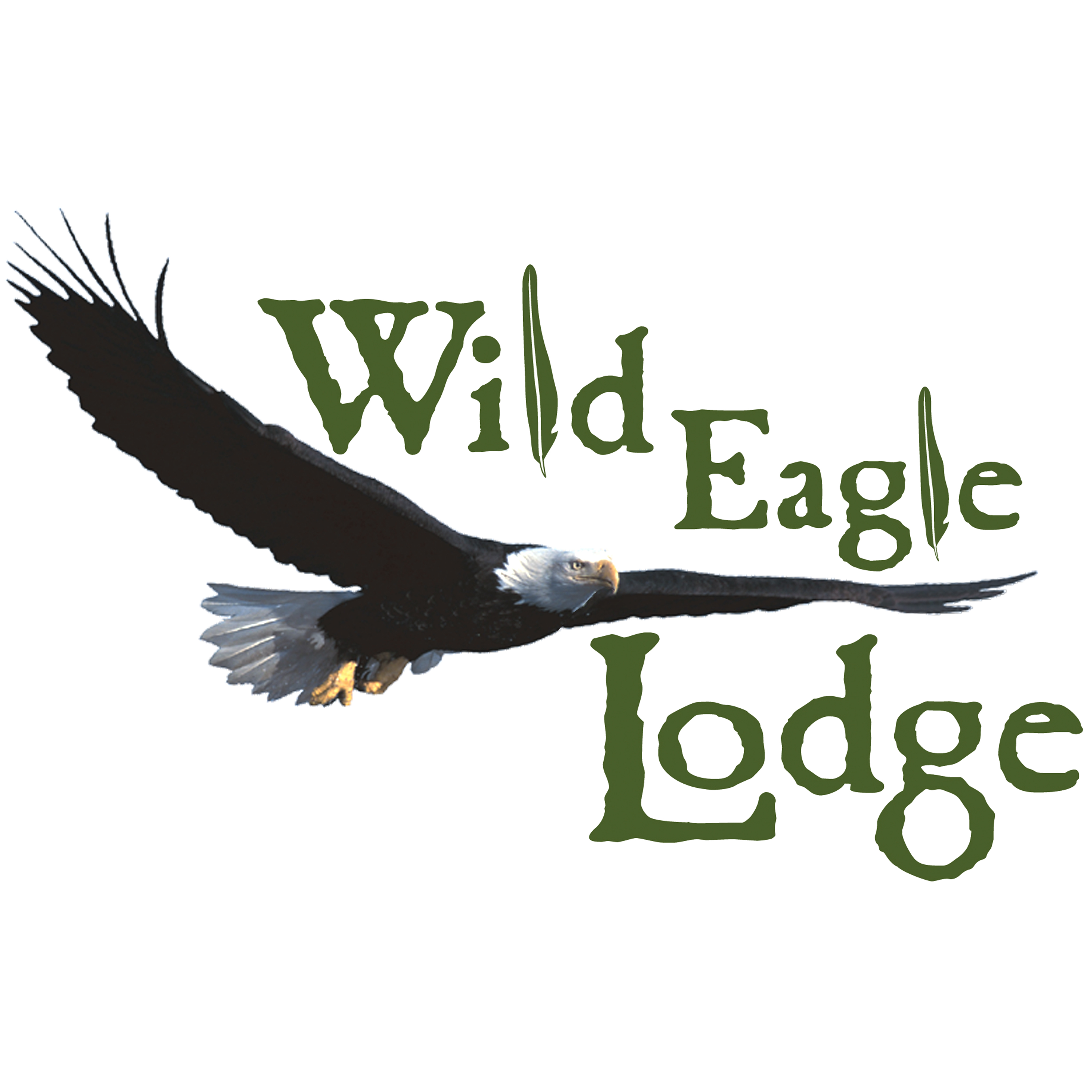 Business Directory For Eagle River Wi