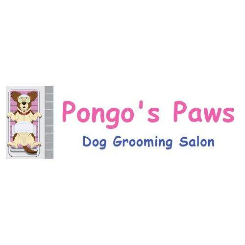 Pongo's Paws Dog Grooming Salon - Sutton Coldfield, West Midlands B75 6PW - 07747 601165 | ShowMeLocal.com