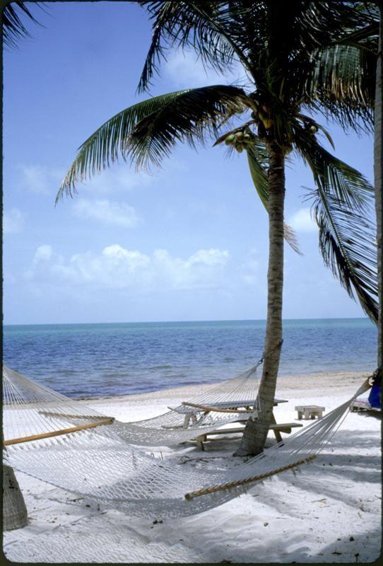 Coco Plum Beach Miami