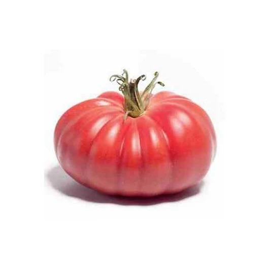 """""""Toma Seeds"""" Tomasz Marasik"""
