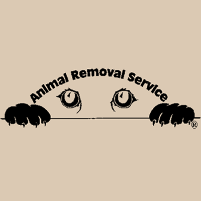 Animal Removal Service - Portage, MI - Pest & Animal Control