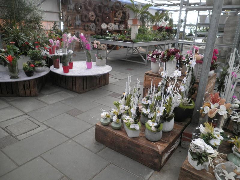 Bloem & Tuincentrum Riet vd