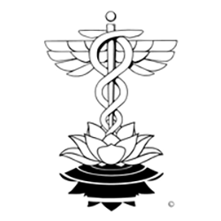 Natural Reflections Healthcare - Edmonds, WA - Alternative Medicine