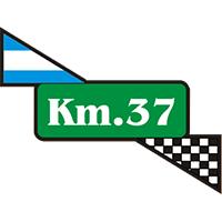 KM 37 REPUESTOS - TREN DELANTERO - SUSPENSION