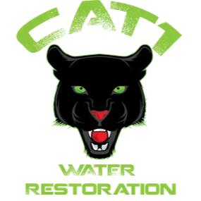 Cat 1 Water Restoration