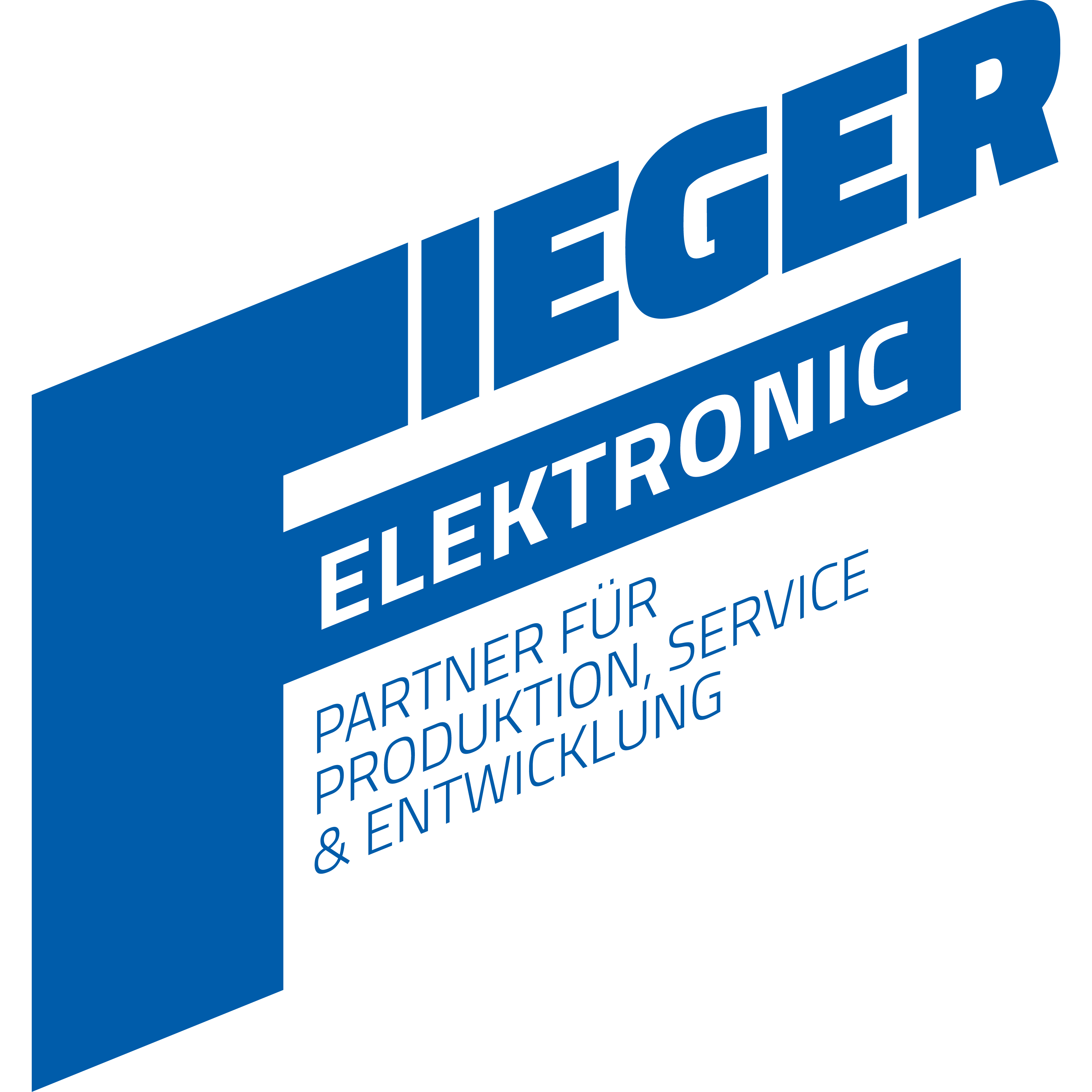 Bild zu Fieger Elektronic GmbH in Karlsruhe