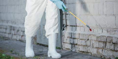 Cole Pest Control