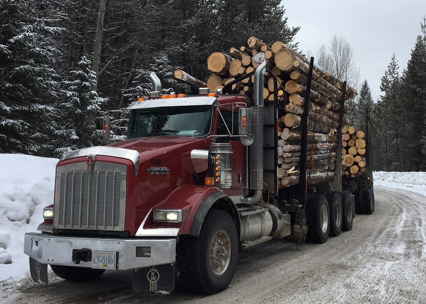 Pacific International Log Trading Inc in Delta: Our Log Trucks will move the wood.  Long log and short log trailer configurations, Short log trucks are pulling Quad and Super B trailers.  Long log trucks pull Triaxle and Tridem trailers.