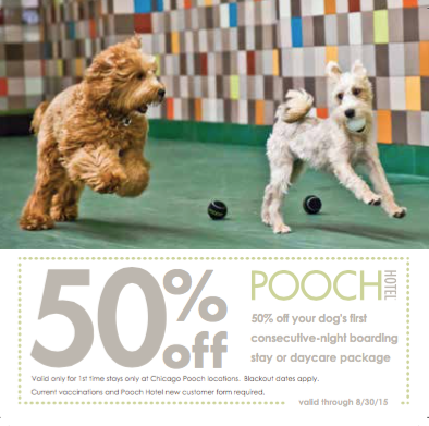 Pooch Hotel In Chicago Il 60614