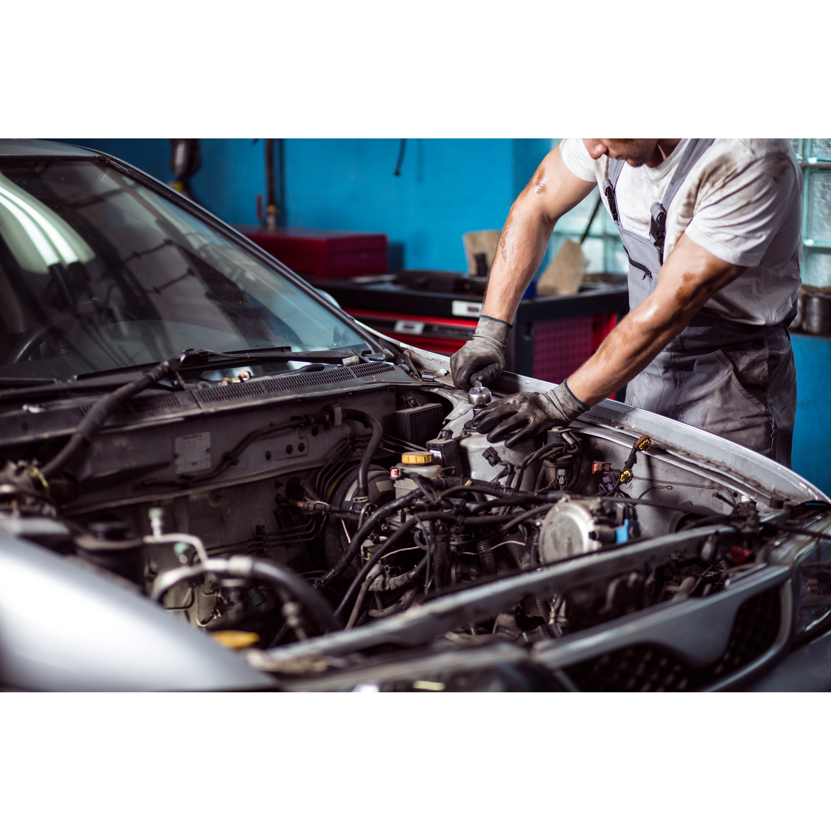 F & W Auto Supply