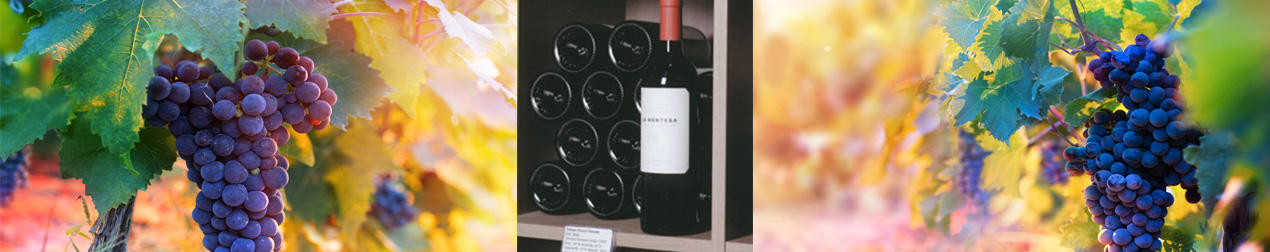 Wijnhuis De Decker