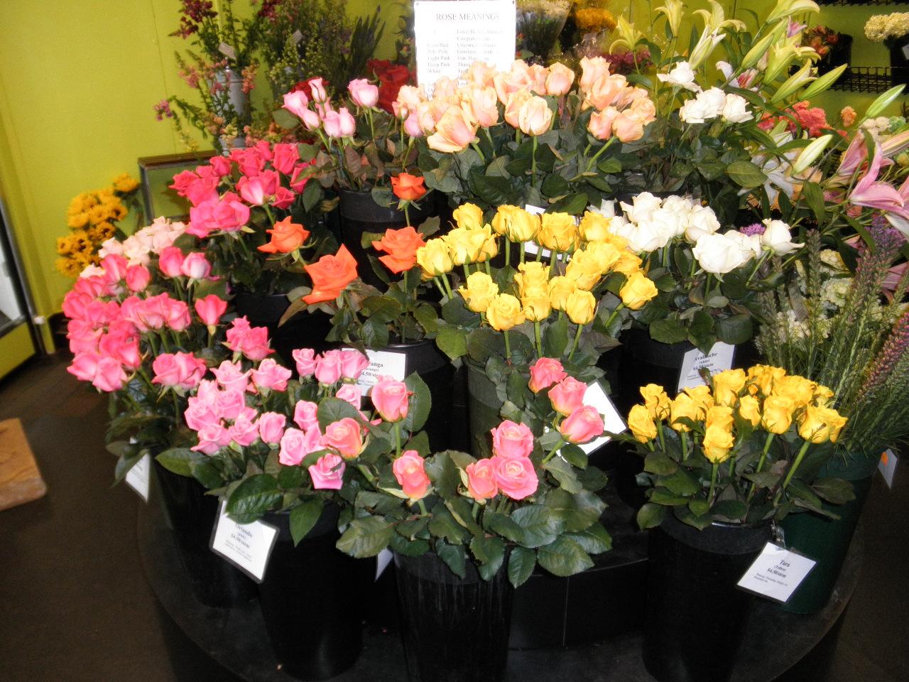 Johnson & Sons Florist