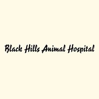 Black Hills Animal Hospital - Rapid City, SD - Kennels & Pet Boarding