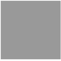 Website Designer in CA Burbank 91506 5D Spectrum 811 South Main Street  (818)487-2504