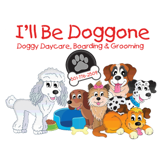 I'll Be Doggone Doggy Daycare, Boarding & Grooming