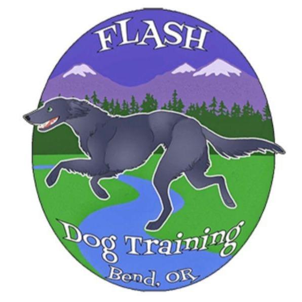 Flash Dog Training Bend Oregon