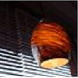 Windows Designs Inc - Durham, NC - Interior Decorators & Designers