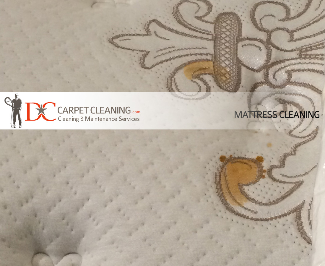 DC Carpet Cleaning