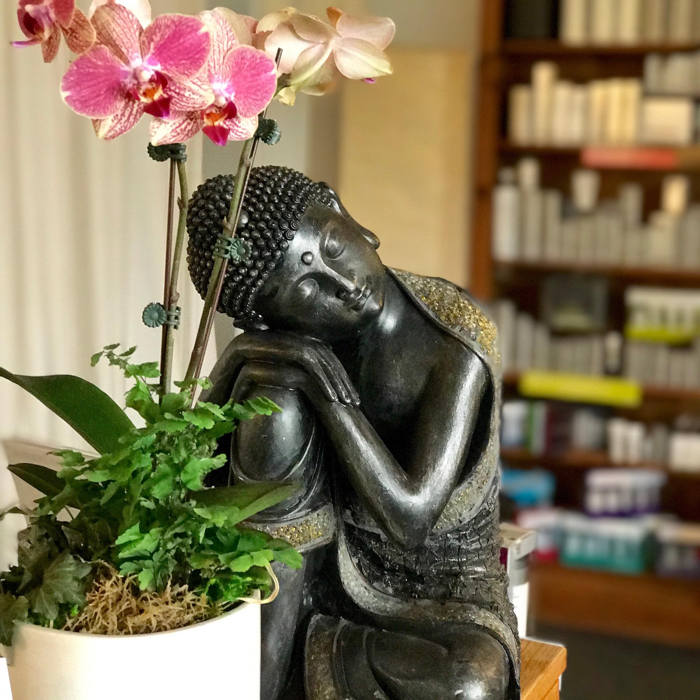 Tranquility Skin and Body Care - Santa Monica, CA - Dermatologists