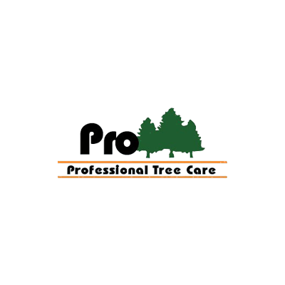 Professional Tree Care - Enid, OK - Tree Services