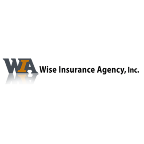 Wise Insurance Agency - Chanhassen, MN - Insurance Agents