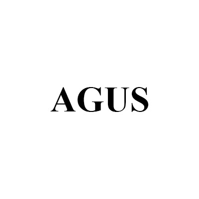 Access Global US, LLC