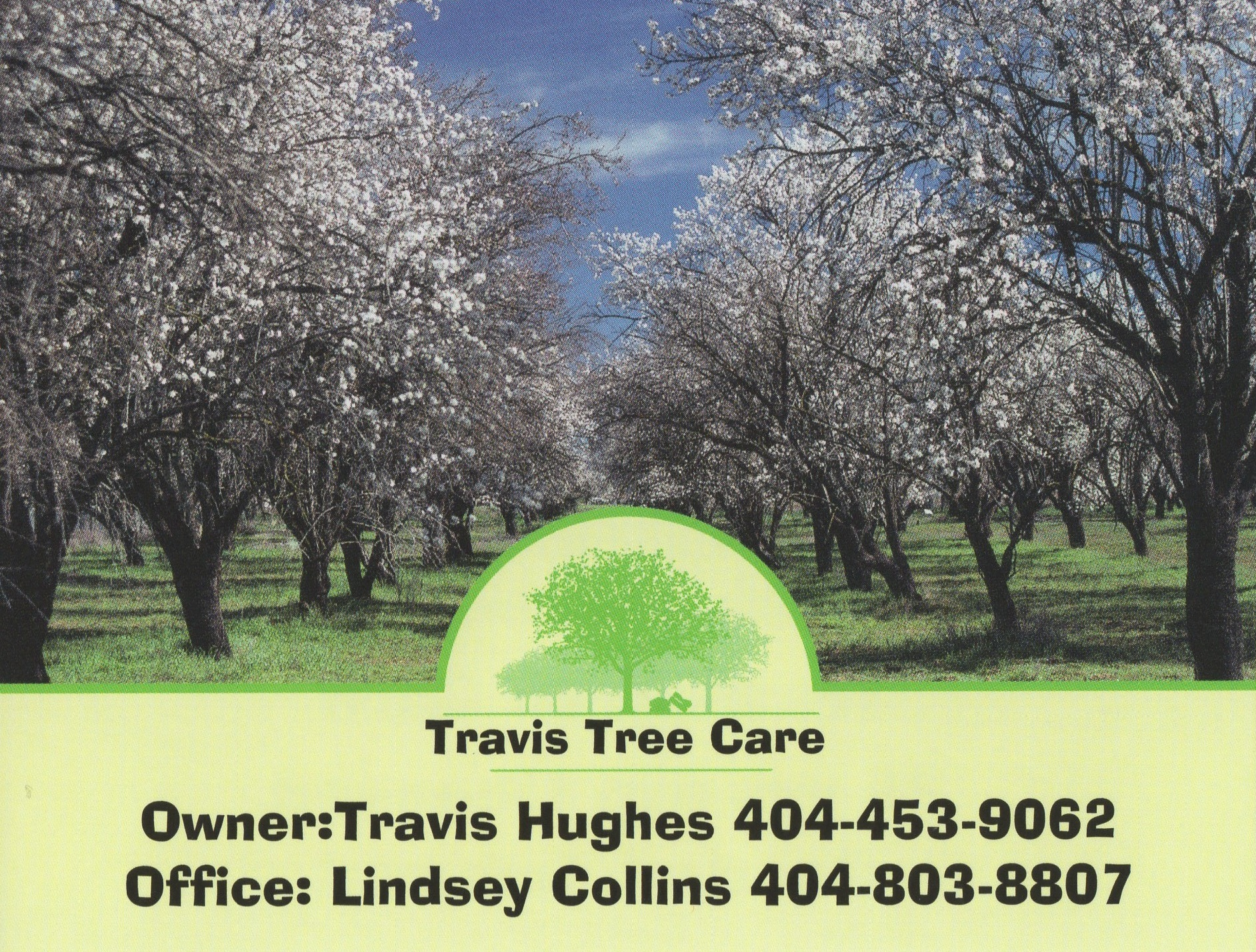 Travis Tree Care and Landscaping