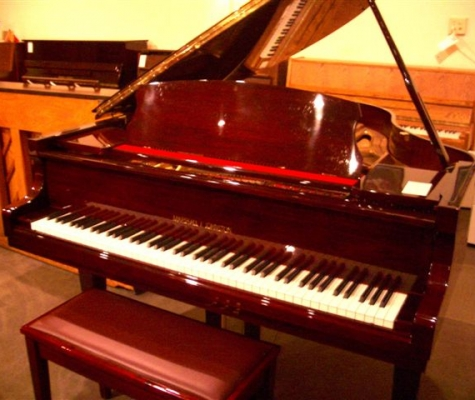 piano tom coupons near me in redmond wa 98053 8coupons. Black Bedroom Furniture Sets. Home Design Ideas