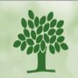 Trim-a-Limb Tree Service